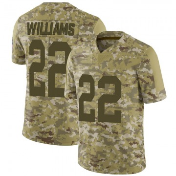 Youth Nike Green Bay Packers Dexter Williams Camo 2018 Salute to Service Jersey - Limited