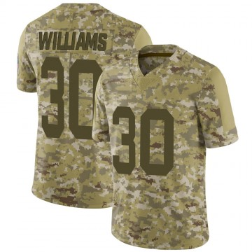 Youth Nike Green Bay Packers Jamaal Williams Camo 2018 Salute to Service Jersey - Limited