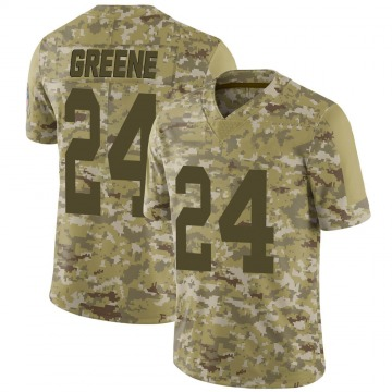 Youth Nike Green Bay Packers Raven Greene Green Camo 2018 Salute to Service Jersey - Limited