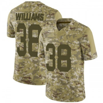 Youth Nike Green Bay Packers Tramon Williams Camo 2018 Salute to Service Jersey - Limited